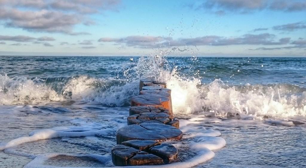 Holzbuhnen am Strand von Zingst an der Ostsee